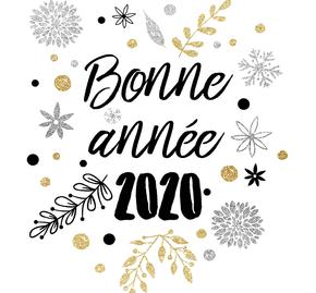 bonne-annee-2020-_5e0f01e821d10